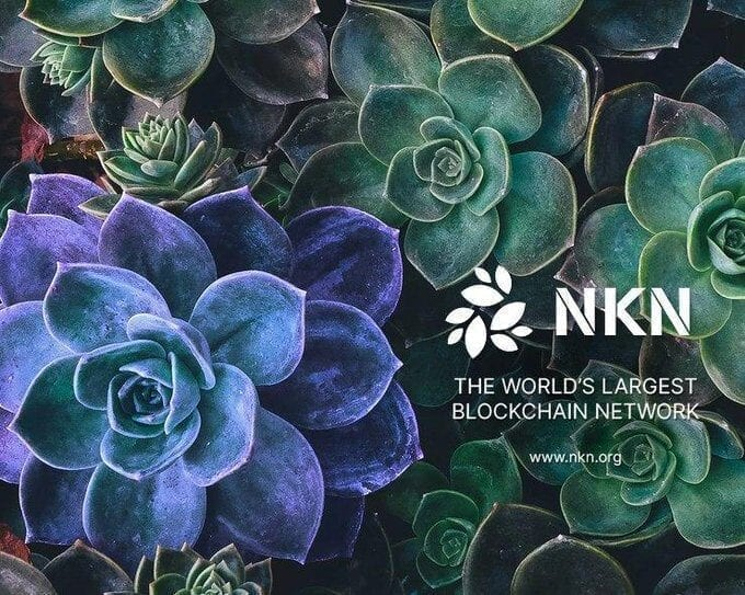 NKN building world's largest blockchain network