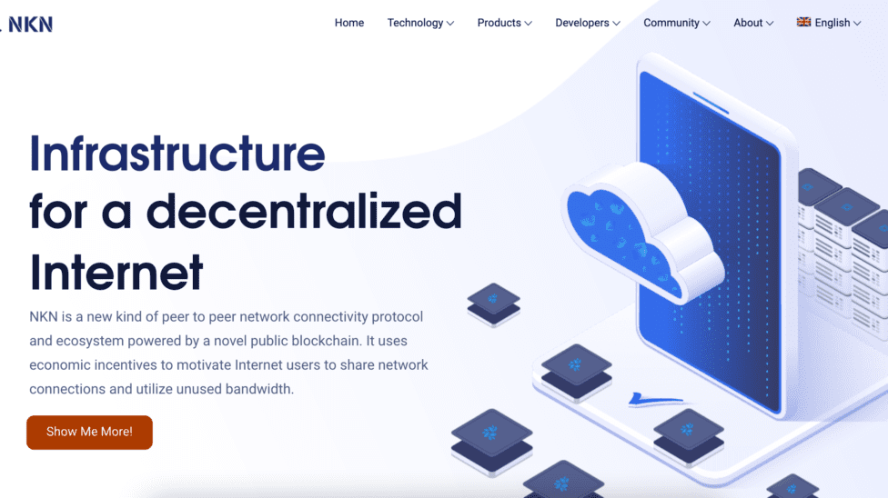 NKN new website poster